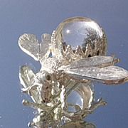 Sterling Silver Crystal Ball Insect Brooch