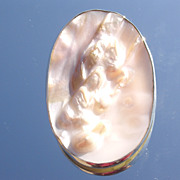 Oval Sterling Shell Pendant/Brooch with Chain
