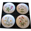 Minton English Bone China Set of 4 Floral Coasters, Meadows Pattern, in Original Box