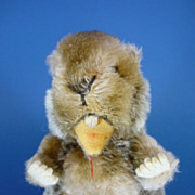 REDUCED 7&quot; C1950 Steiff Beaver Nagy Vintage Mohair Toy