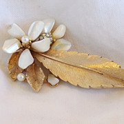 SALE Vintage Capri Goldtone Leaf and Baby Tooth Mother of Pearl Brooch