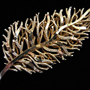 Vintage Coro Stylized Leaf Pin Brooch