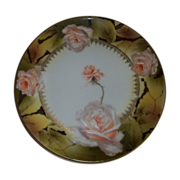 Royal Rudolstadt  Beautiful Rose Plate  Prussia 1905-1932