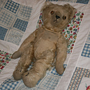 SOLD Early Steiff Teddy Bear Gold 15 Inch Growler Jointed Mohair 1930s