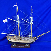 Well Finished Model Of HMS Halifax (1768) 1/35th Scale On Stand