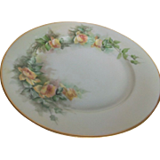 MZ Austria Handpainted Roses on Porcelain Plate