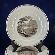 6 Royal Staffordshire Ironstone Plates &quot;Colonial Valley&quot;