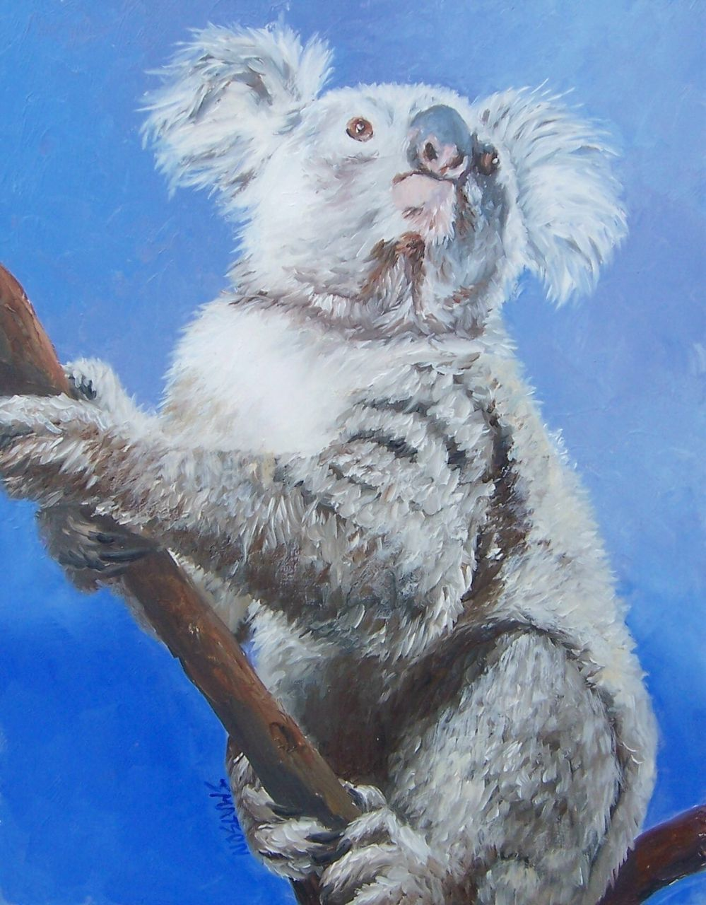 Koala - Original FRAMED Oil Painting by Jan Matson