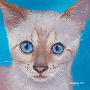 Blue Eyed Cat, oil painting by Jan Matson