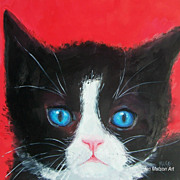 Black  and White Cat oil painting, by Jan Matson