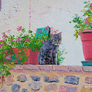 Tabby Cat on a Brick Wall, oil painting by Jan Matson
