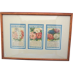 Framed Penny Packet Seeds-The Childrens Mission