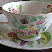SALE Cup & Saucer antique porcelain with bird & flowers