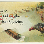 SALE Thanksgiving Postcard with Turkeys and Feather