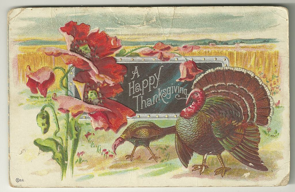 Thanksgiving Postcard by D. Goldie