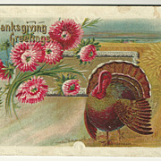 Tom Turkey Thanksgiving Postcard with Pink Flowers