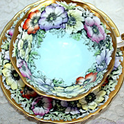 Vintage Paragon Cabinet Bone China Tea Cup Wild Anemone