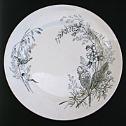 Aesthetic Movement Transferware Plate, Victoria Pattern