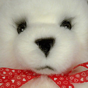 1984 Avanti White Classic Teddy Bear with Gift Tag, Box - Perfect, Cuddly and Oh-So Soft