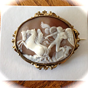 SOLD Phoebus Apollo Shell Cameo