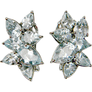 Stylish Aquamarine Earrings  (1016)