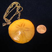 Vintage Butterscotch Color Natural Star Sand Dollar Necklace