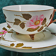 Ott & Brewer American Belleek Cup & Saucer Rose Decoration