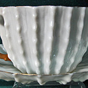 Ott & Brewer American Belleek Cup & Saucer Cactus