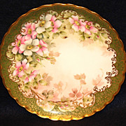 Lovely Limoges Hand Painted Floral plate