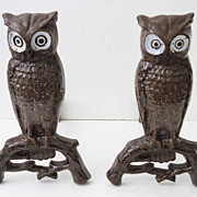 Pair of Brown Enamel Owl Andirons