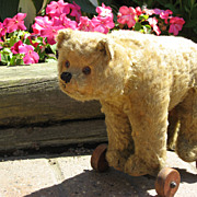 Antique Early German Steiff Teddy Bear on Wheels