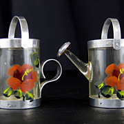 Souvenir Floral Clear Plastic Water Can Sprinkler Salt and Pepper Shakers S&P-Indian River