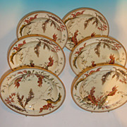 Set of 6 Wedgwood Soups with Flora of the Sea Decoration