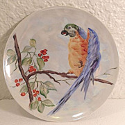 SALE Gorgeous Hand-Painted Parrot Decorative Plate