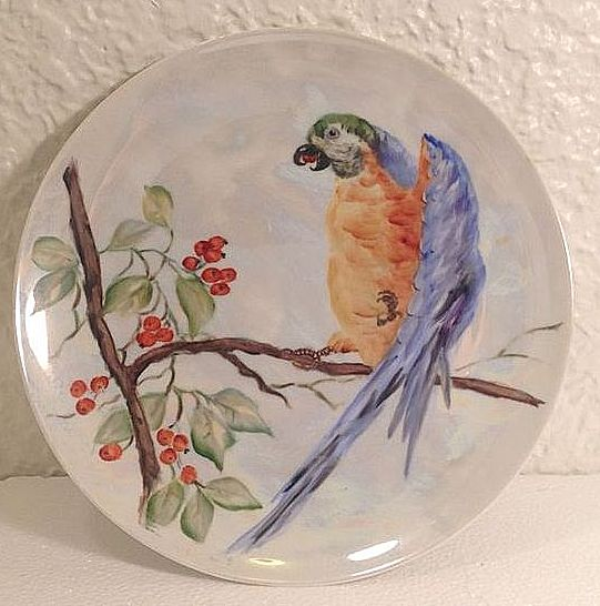 Gorgeous Hand-Painted Parrot Decorative Plate