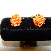 SOLD Earrings Luscious Peach Genuine Coral Mosaic On Gold Tone Body