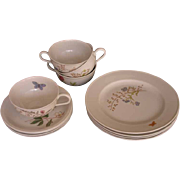 Hutschenreuther Tea Set for Four  (12 pieces) Turvel Shape Flower and Butterfly Decor - 20th C