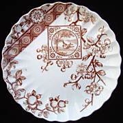 SALE Victorian Brown Bird Transferware Plate ~ DADO 1885