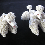 White Spaghetti Poodles by Wales, Before and After
