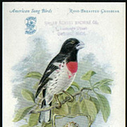 1927 Singer Sewing Machines Card American Song Bird Series Rose-Breasted Grosbeak
