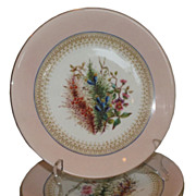 Early Antique Derby Porcelain Hand Painted Plates with Flowers