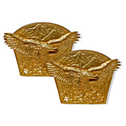 Pair of Antique Gilt Bronze Eagle Bookends