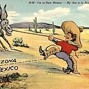 Humorous Western Postcard  - Cowboy in Arizona and New Mexico