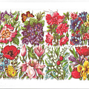 German Die Cuts of Beautiful Flowers