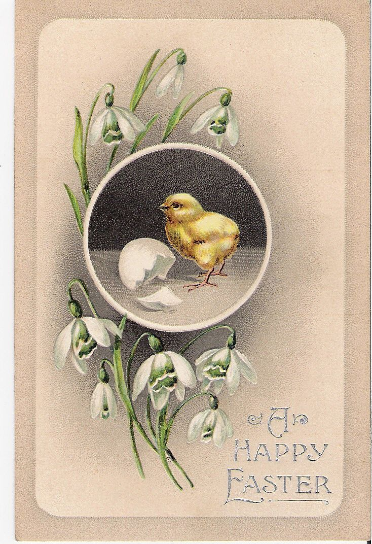 """A Happy Easter"" - Baby Chick"