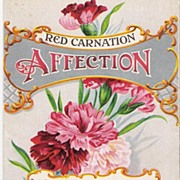 """Affection"" - Red Carnation"" - Valentine - Postcard"