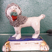 Staffordshire Poodle on Platform