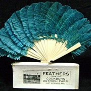 1900 Ostrich Feather Fan Cockburn Ostrich Farm Hot Springs, Arkansas