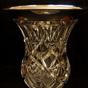 Exceptional Gebruder Friedlander Sterling & Cut Crystal Vase