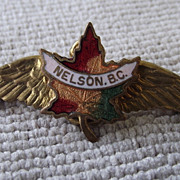 REDUCED Sweet Vintage Travel Pin, Nelson, BC Canada, Enamel Face!